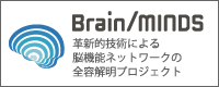 Brain/MINDS